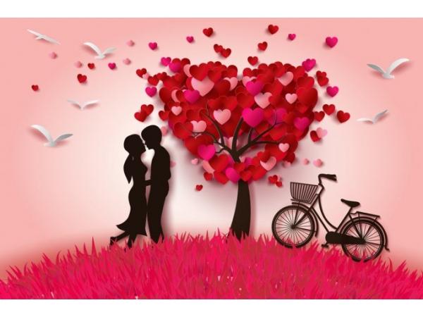 Speciale San Valentino B B La Terrazza